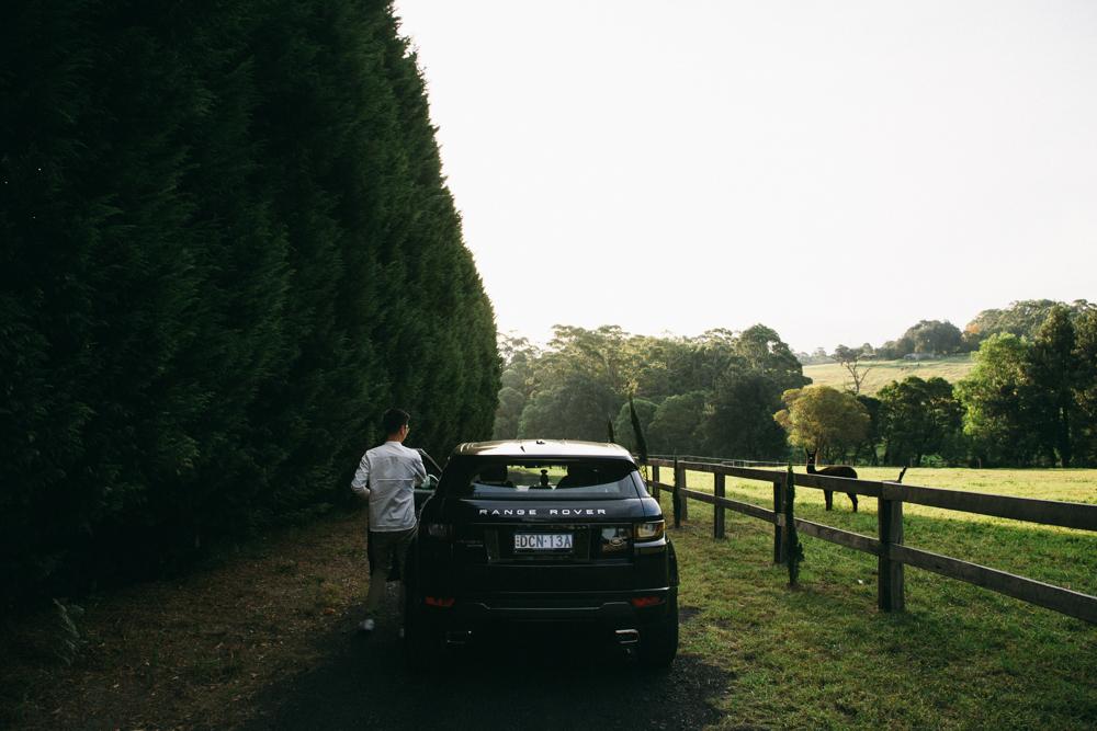 Car Details: Range Rover Evoque HSE