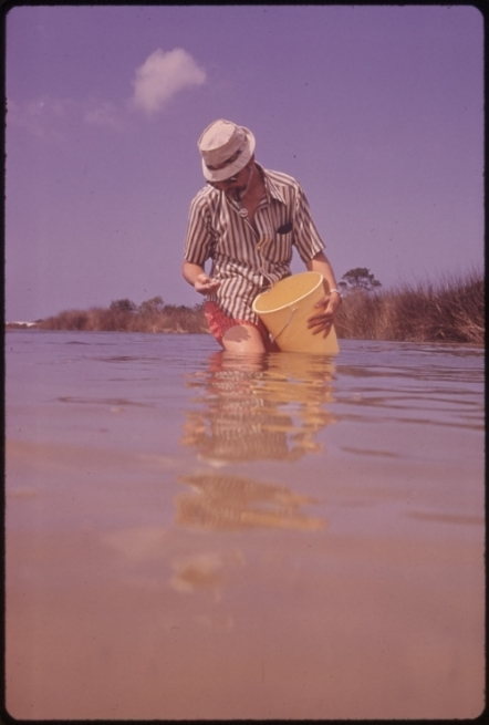 So this is not actually me the day I got stuck in the mud (for one thing, I was not dressed this awesomely). But this photo I found of a biologist sampling in a salt marsh reminded me of what we were doing the day I got stuck in the mud, except we weren't doing it in the 1970s.