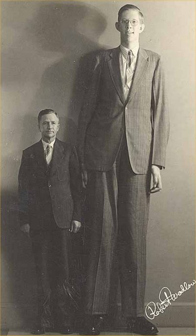 Tallest person in the world