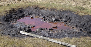 Here's what oil looks like when it is seeping out of the ground next to a fence post.