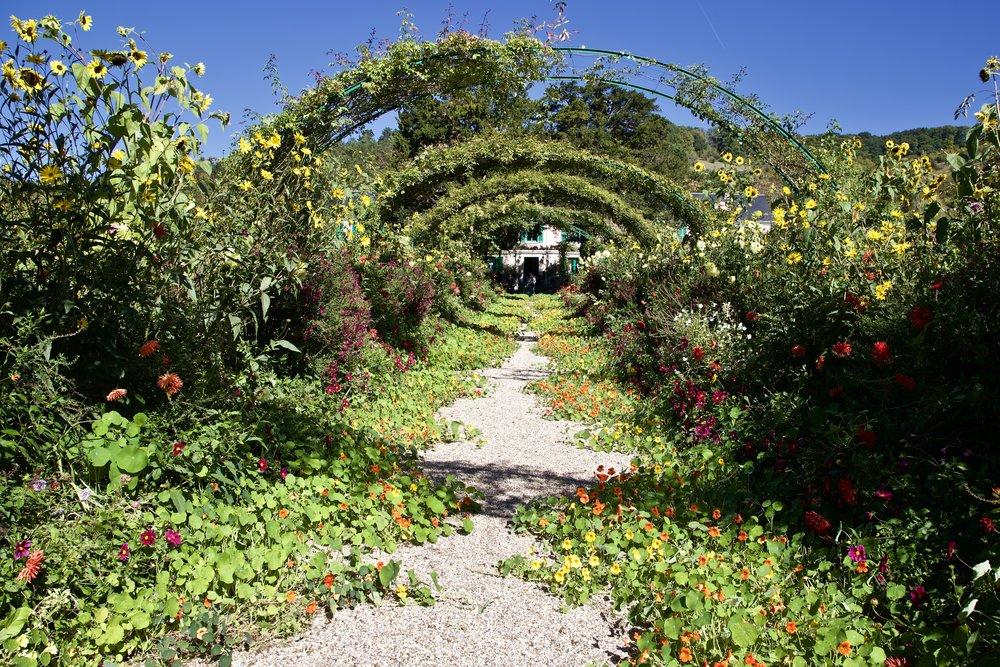 Monet's Garden - Looking Toward His House