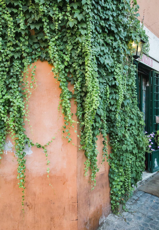 Italy_0055.jpg