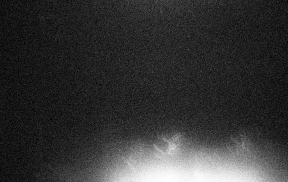 archival pigment print from b+w 35mm film negative, dimensions variable, 2014/2019