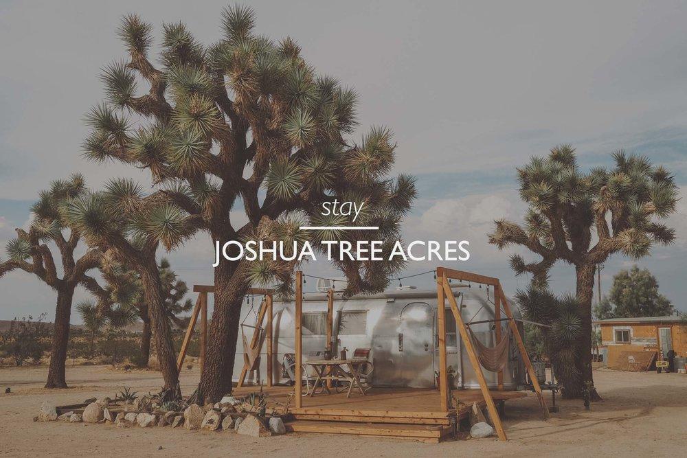 stay  joshua tree review  joshua tree acres