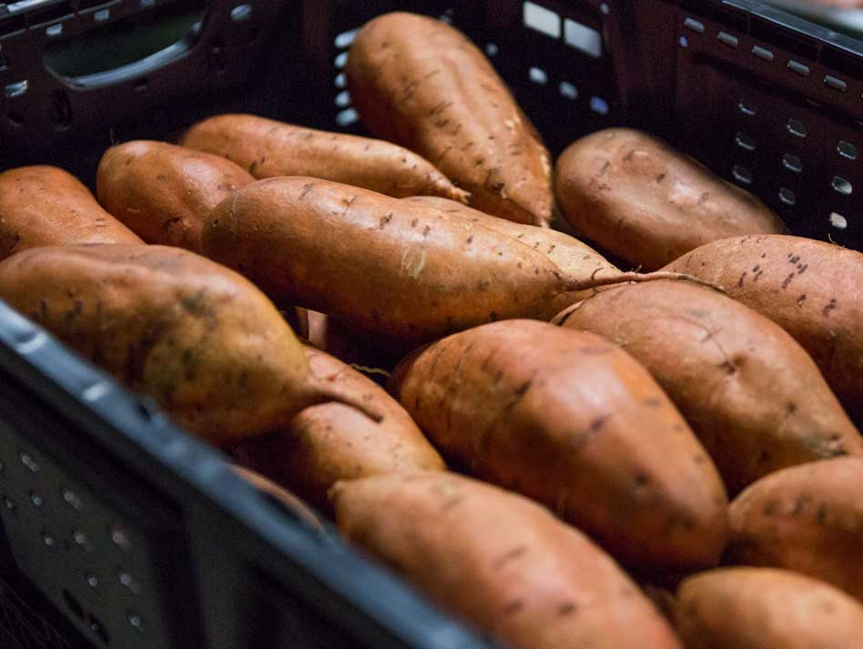 sweet-potatoes.jpg