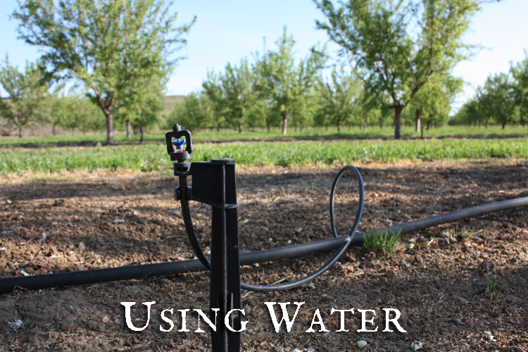 Using-Water750500.png