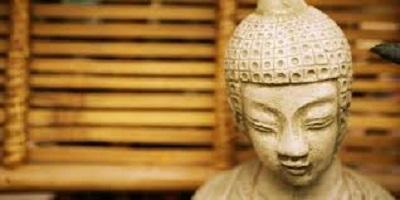 meditation.head.bigger.jpg