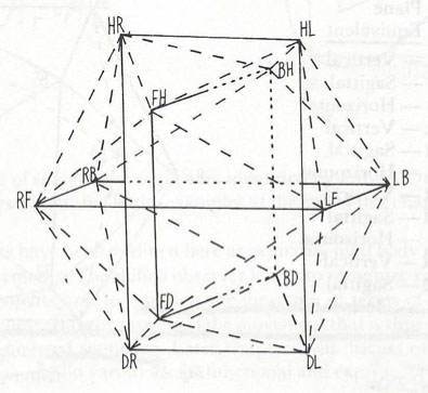The icosahedron is part of Rudolf Laban's theory of Space Harmony.