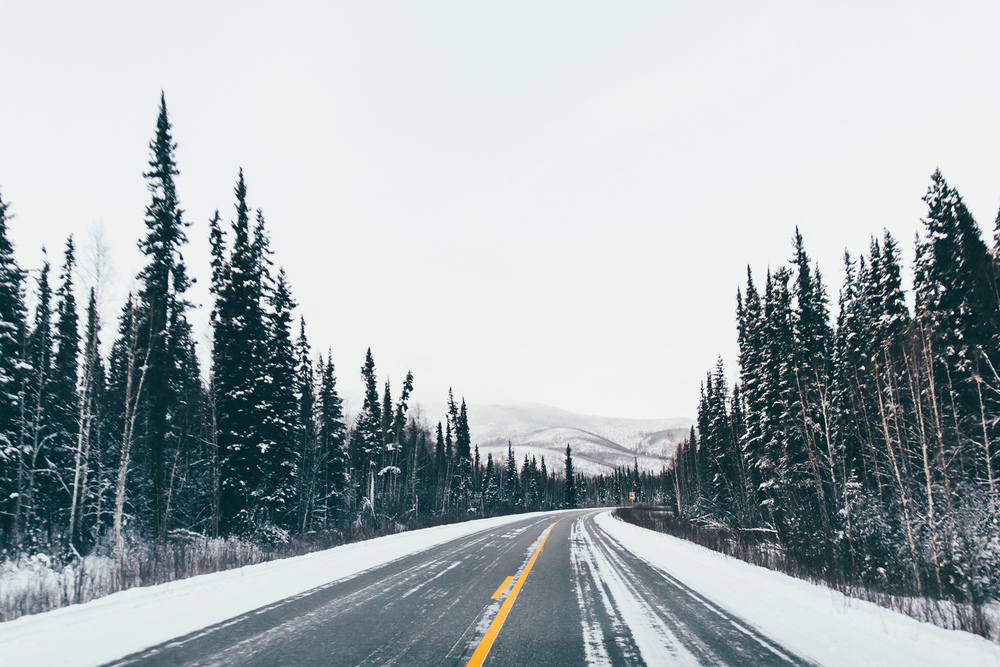The road to Chena Hot Springs.
