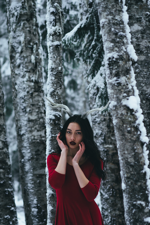 Xmas Abby-307.jpg