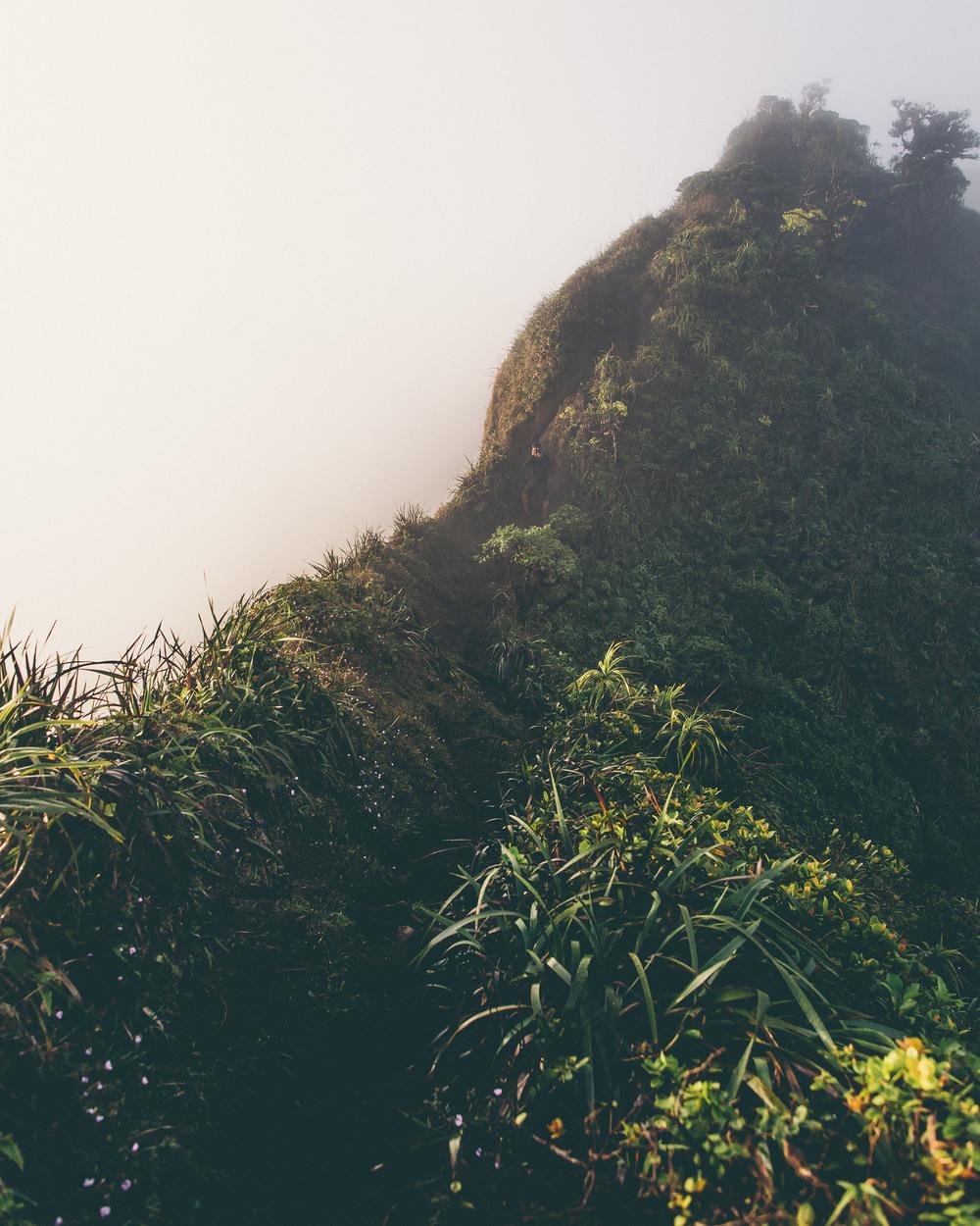 Haiku Stairs-206.jpg