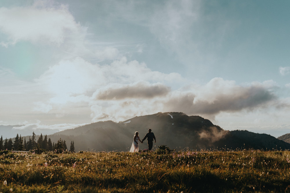 Olympic-National-Park-Hurricane-Ridge-Engagement