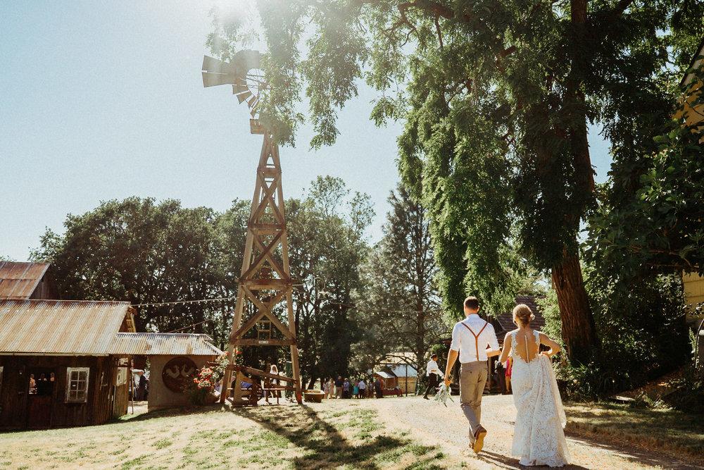 Summerhill-Farms-Portland-Wedding-Photographer-Backyard-Vineyard-61.jpg