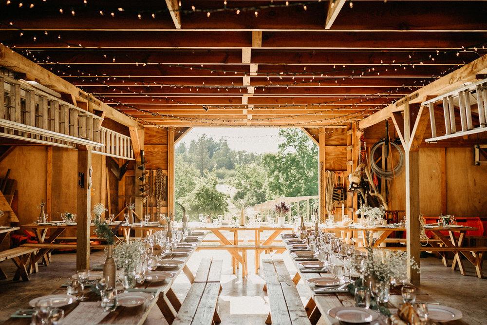 Summerhill-Farms-Portland-Wedding-Photographer-Backyard-Vineyard-65.jpg