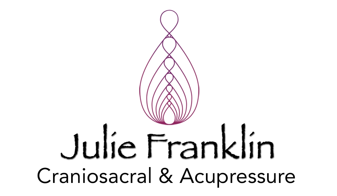 Julie Franklin