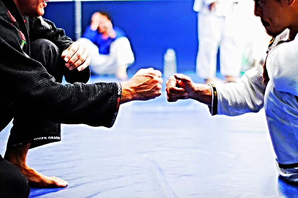 Risultati immagini per brazilian jiu jitsu