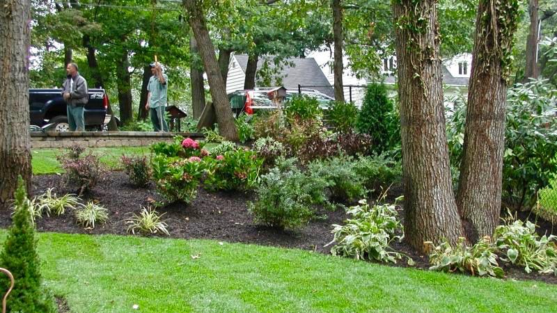 P#1 Garden(16x9)144.jpg