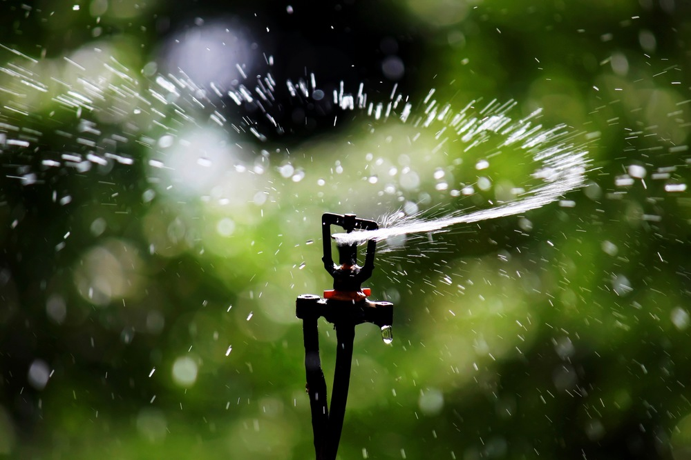 SERVICE Sprinkler (3x2)