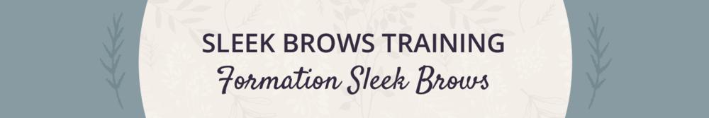 sleek-brows-training.jpg