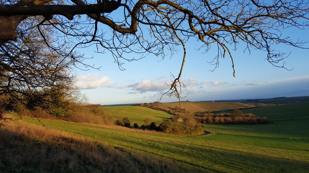 Salisbury Plain 02.jpg