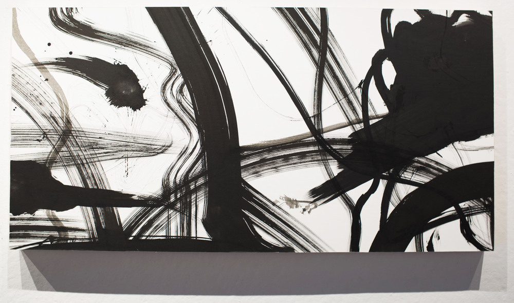 "Captured Memories #2   2015  Ink and paper on panel  24""x 48"""