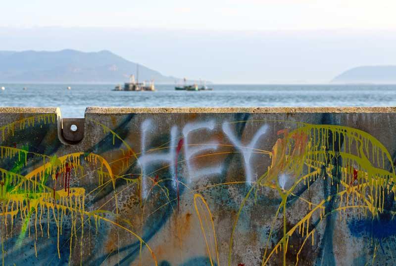 Lummi-Island-Seawall-Hey.jpg