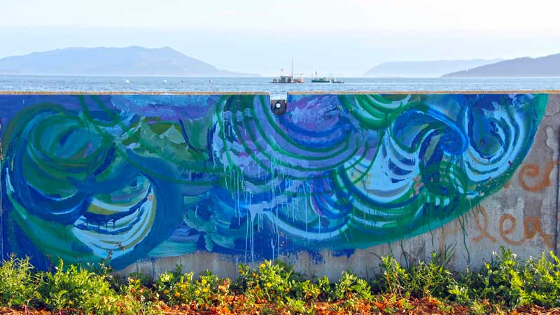 Lummi-Island-Seawall-Waves.jpg