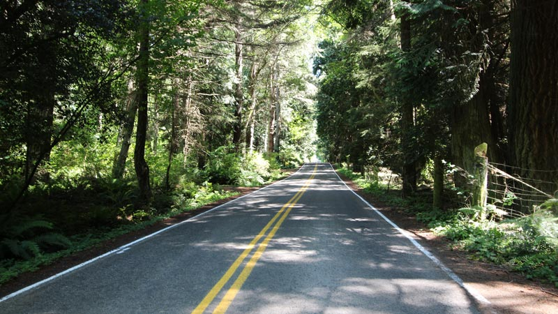 The cedar hall of Sunrise Road