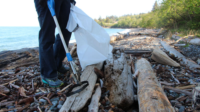 Cleanup on Frank's Beach
