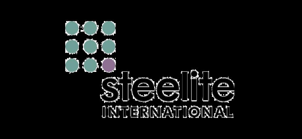Steelite.png