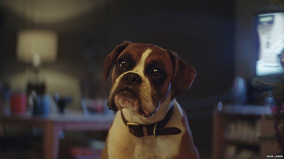 John Lewis - 'Buster the Boxer'