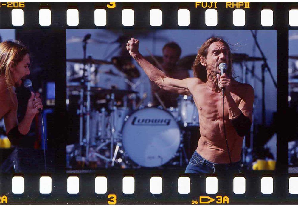 Iggy Pop @ Coachella Music Festival.jpg