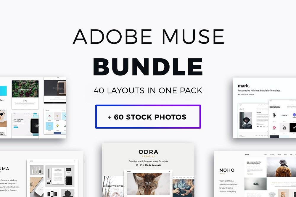 adobe muse bundle 40 templates bundle pixasquare