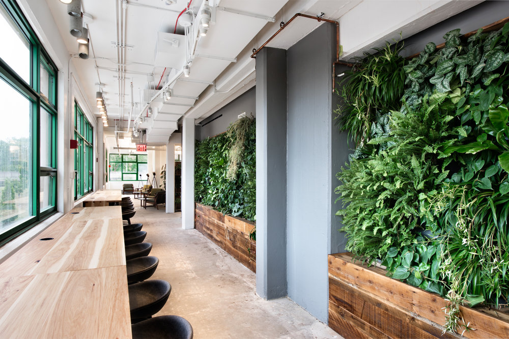 Etsy HQ, living walls