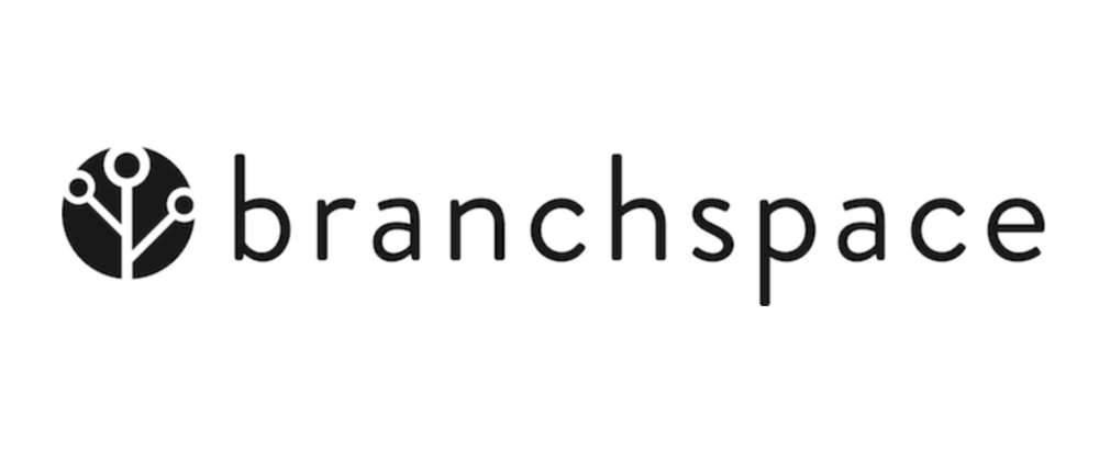 branchspace logo more white.png