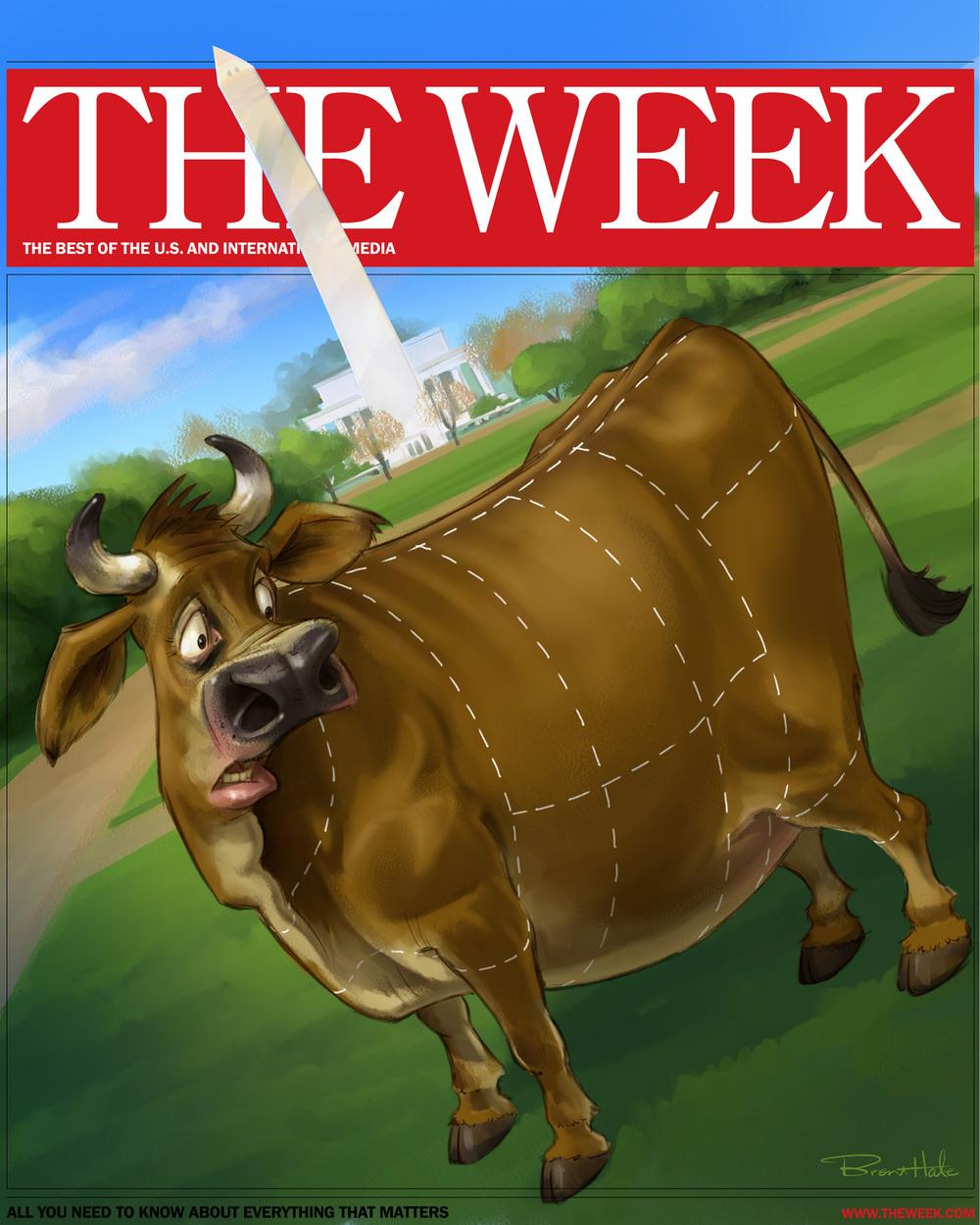 Cow illus Week.jpg