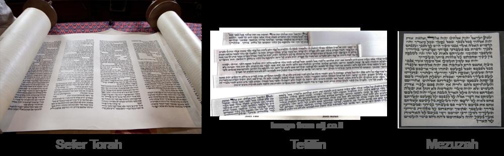Stam-Scrolls.png