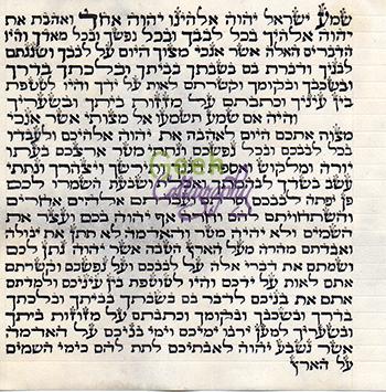 Newest Judaica Product - 12 cm Mezuzah parchment