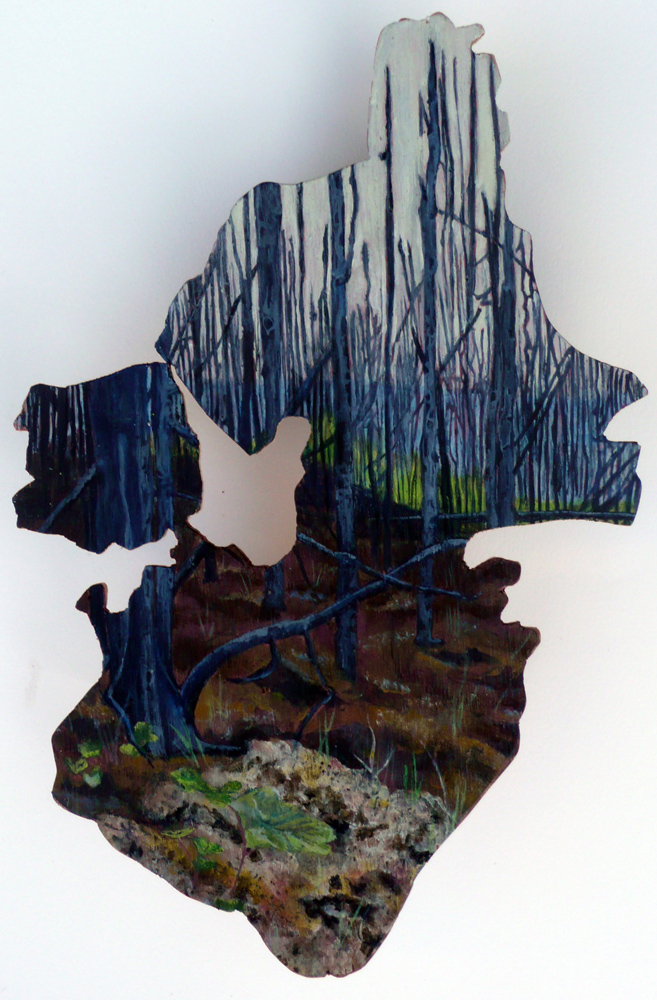 Fire Shape II- Moose Mountain
