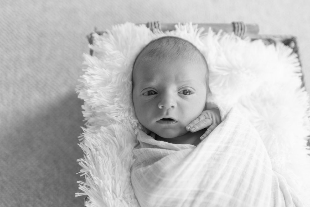 Parker Rose Newborn (16 of 139).jpg