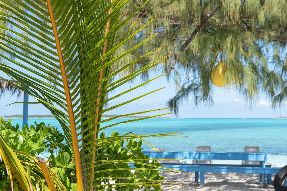 Exuma Bahamas 2019  (16 of 71).jpg