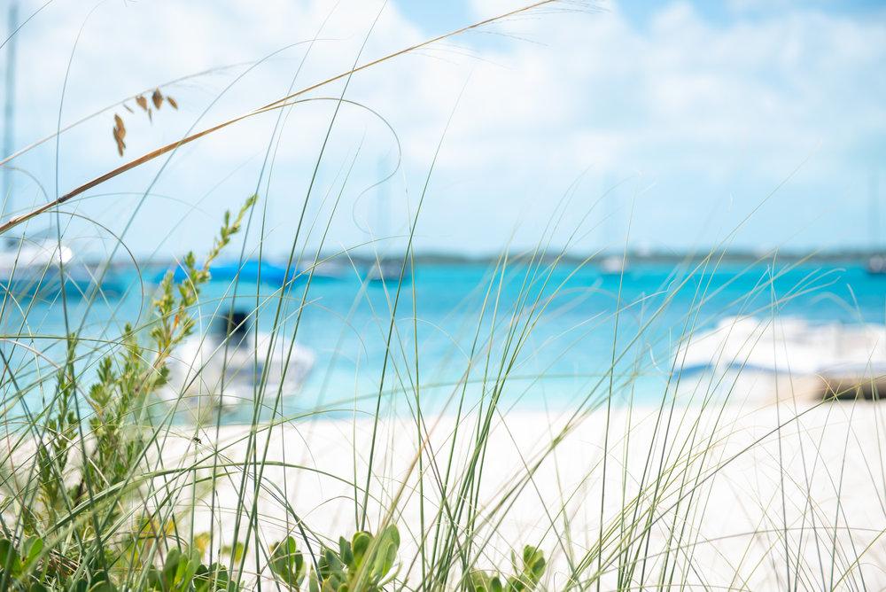 Exuma Bahamas 2019  (50 of 71).jpg