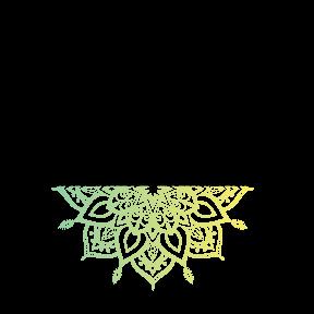 PYF_logo_MAIN (1).png