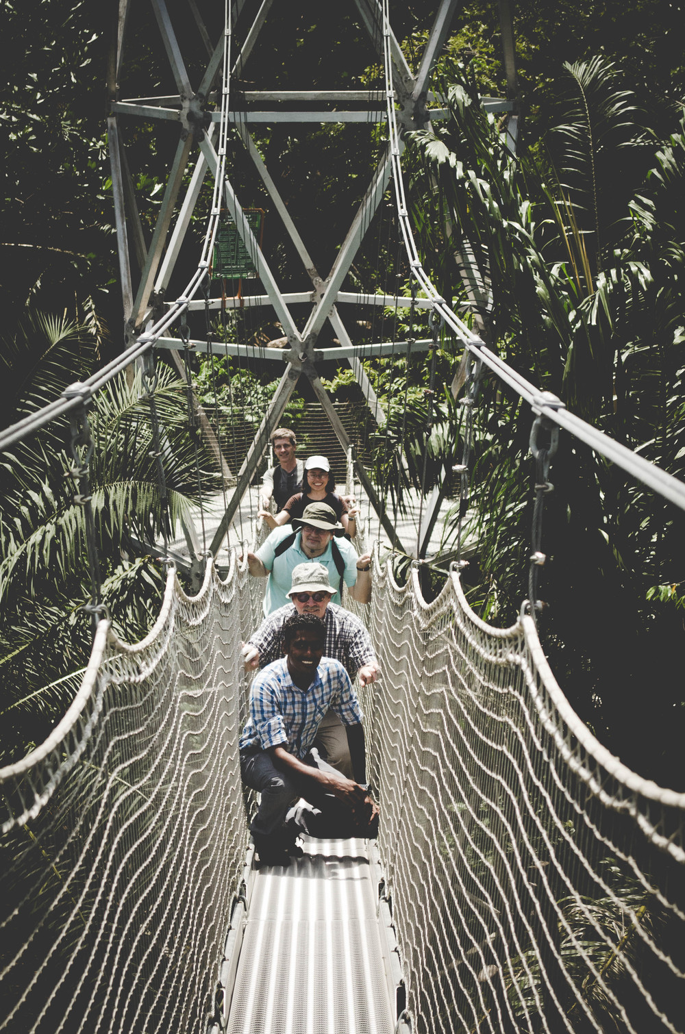 Lekki Conservation Centre tree canopy walk