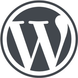 WordPress-logotype-alternative.png