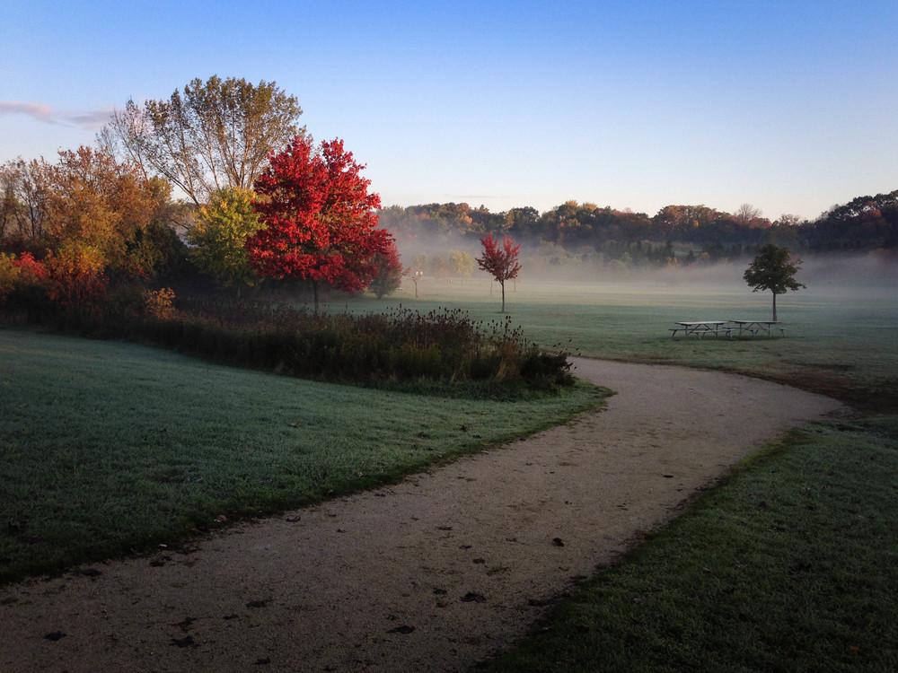""" Erindale Park ""( CC 0 1.0 )by  mustangjoe"