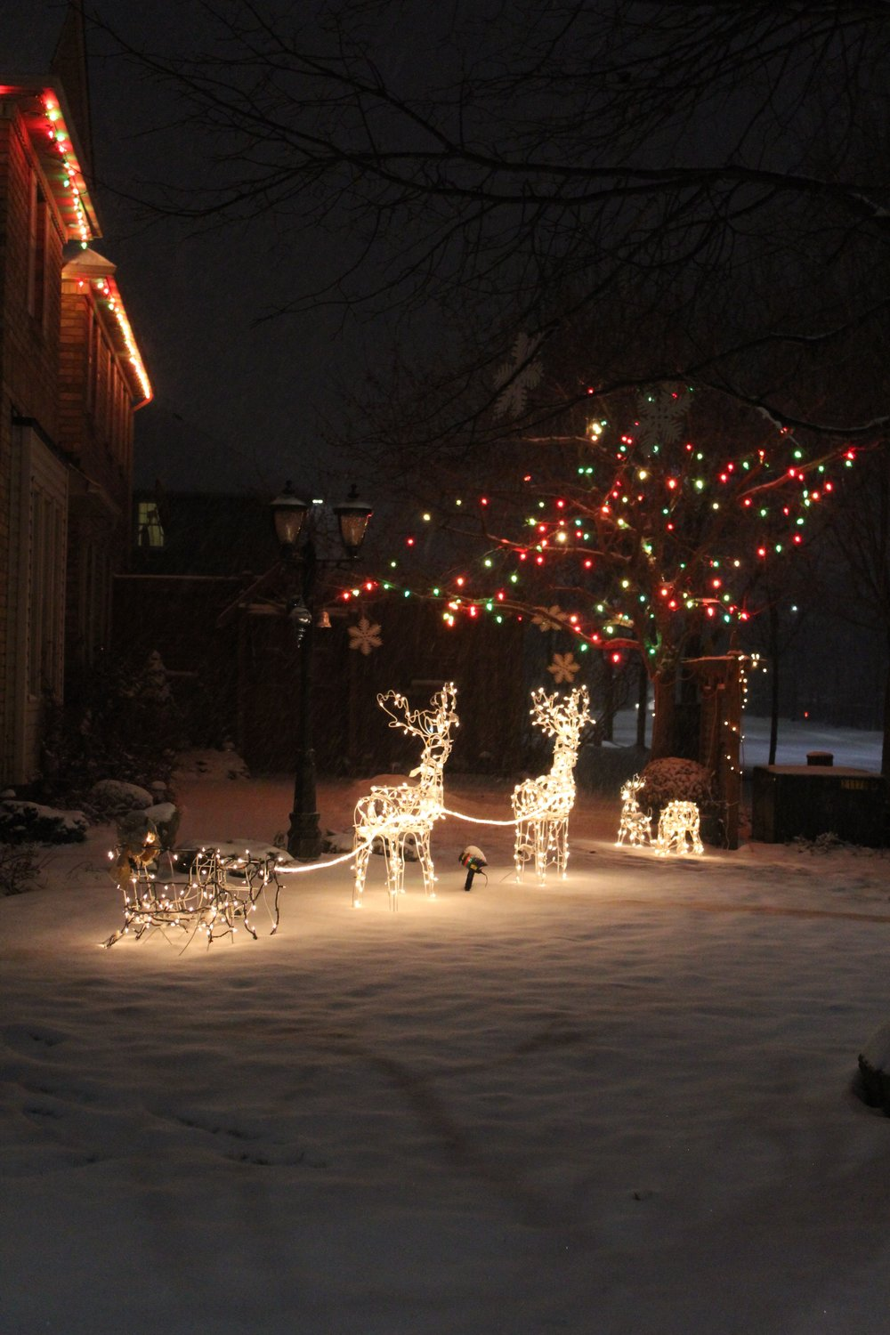 Front door christmas lights - Location Right Outside Your Front Door The Weather Outside May Be Frightful But The Sights Are So Delightful So Bundle Up And Hit The Streets Of Your