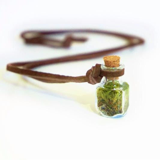 Greenie in a bottleNeed we say more…mini worlds by Terrarium House add green to your holiday season! Necklace, $30.