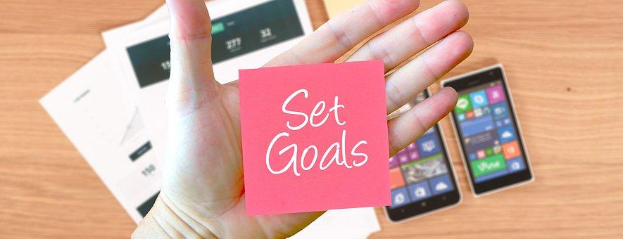 Modern Mississauga goals.jpg