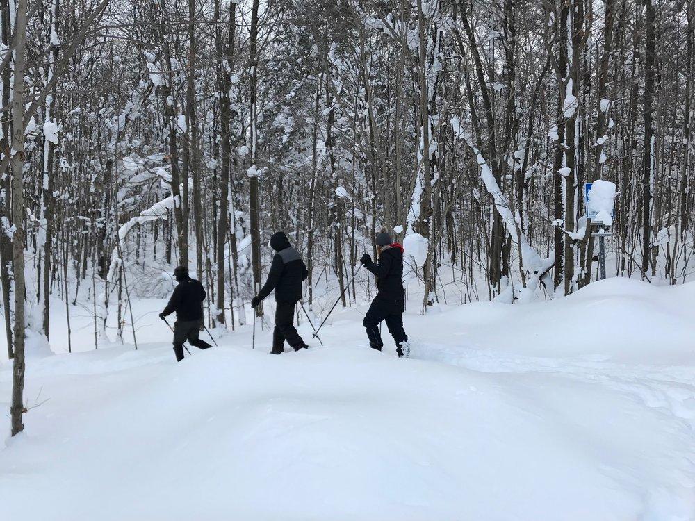 Snowshoeing_Mayville_Credit_JenniferMerrick (6).jpg